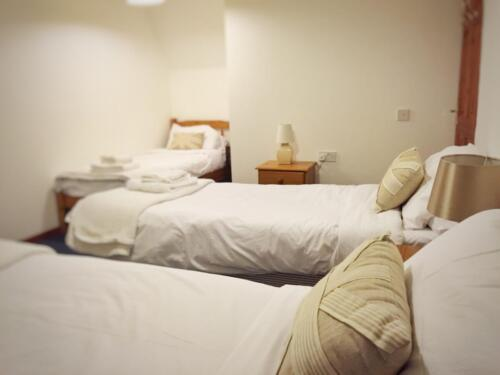 Ollie's Lodge - Sleeps 12