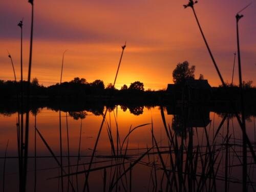 Stunning sunsets over the lake