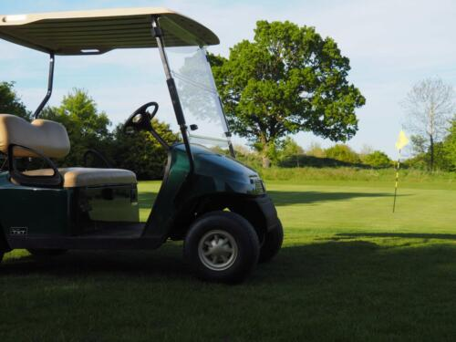 Buggy Hire £25 per round